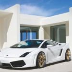 Gallardo Lp560 White Modified Wallpaper